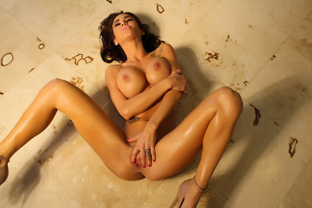 Sandee Westgate Biography Free Pics Photos Famous Busty Pornstars Pics